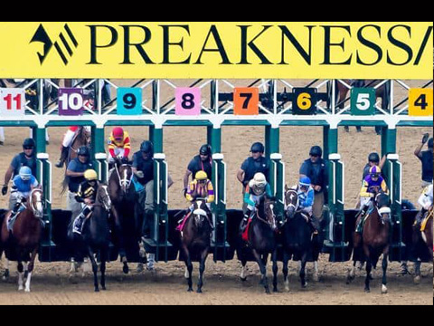 The 146th Running of the Preakness Stakes